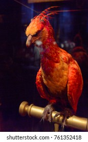 MADRID, SPAIN - NOV 22, 2017: Fawkes Phoenix bird, Wizarding world of Harry Poter experience in Madrid, Spain