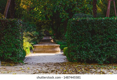 Madrid, Spain, November 12, 2017 Botanical garden in Madrid called Real Jardín Botánico autumn view with plants and enviroment