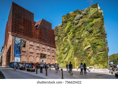 Vertical garden building stock images royalty free images - Garden center madrid ...