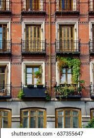 Madrid`s windows
