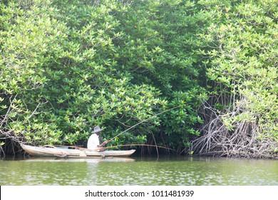 Madu Ganga, Balapitiya, Sri Lanka - DECEMBER 2015 - An older fisherman trying to catch some fish on Maduganga lake, Asia
