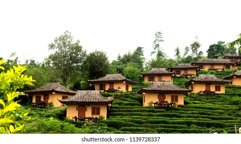 Mae Aw or Rak Thai Village in Pai district, a Chinese settlement in Mae Hong Son province, Northern Thailand