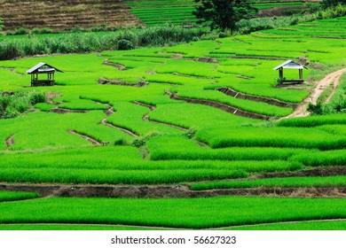 mae cheam chiangmai Thailand