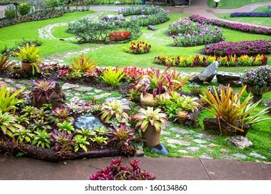 Mae Fah Luang Garden,locate on Doi Tung, Chiangrai Province, Thailand