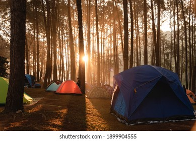 Mae Hong Son, Thailand-22 January 2021 : Local tourist tent at the camping area in Thai National park among pine and sunrise, Pang Oung, Mae Hong Son, Thailand