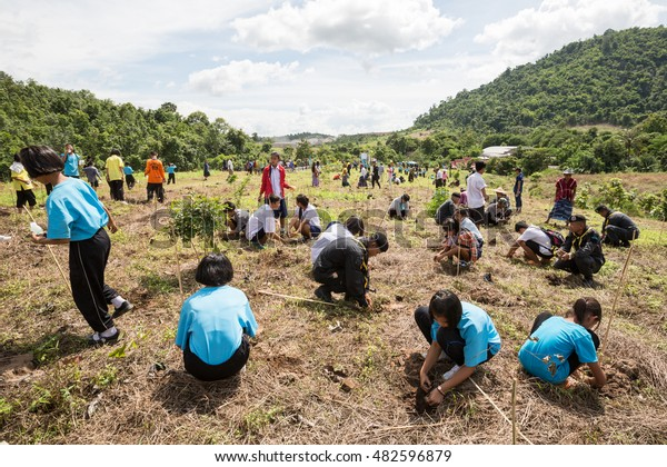MAE SOT, TAK, THAILAND - SEPTEMBER 13, 2016 : Students, soldier and villagers are participating in reforestation at public place Ban Wang Takhian, Mae Sot, Tak, Thailand.