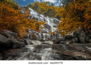 Mae Ya Waterfall ans Fallen leaves and leaves change color in Doi Inthanon National Park.