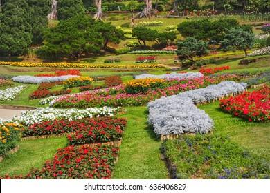 Maefah luang flower garden landscape , public and famous flower garden of Thailand, 22/4/2017, Chiangrai , Thailand.