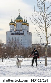 Magadan, Magadan Region, Russia - April 7, 2018: Dzyalbu ethnic festival. Skijoring competition (winter sport in which a person on skis is pulled by a dog). Sportswoman with a sled dog.