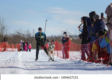 Magadan, Magadan Region, Russia - April 7, 2018: Dzyalbu ethnic festival. Skijoring competition (winter sport in which a person on skis is pulled by a dog). Modern winter sport with sled dogs.