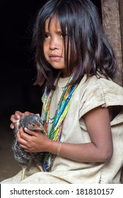 MAGDALENA, COLOMBIA - FEBRUARY 6: An indigenous Wiwa girl sits with her chicken in the Magdalena Department in Colombia on February 6, 2014.