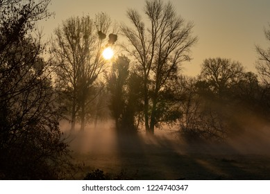 Magdeburg, Germany - November 4, 2018: The first rays of sunshine shine through the trees in Magdeburg City Park, Germany.