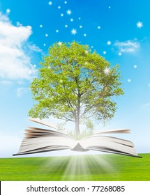 Magic book with a green tree and the rays of light on the background of nature. Symbol of knowledge.
