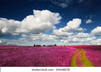 Magic Landscape � Pink Field and Sky with Real Stars