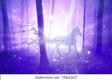 Magic purple foggy light in the forest with horse. Abstract unicorn in the fairy woodland. Double exposure technique used.