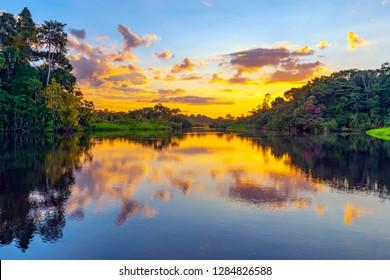 A magic sunset in the Amazon Rainforest inside Yasuni national park. The Amazon rainforest comprise the countries of Ecuador, Peru, Bolivia, Brazil, Colombia, Suriname, Venezuela, Guyana.