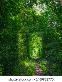 Magic Tunnel of Love near Klevan, Ukraine. Green trees and old railway line