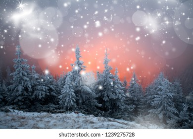 Magic winter landscape with dramatic sunrise, fog and snow - Holiday and Christmas background