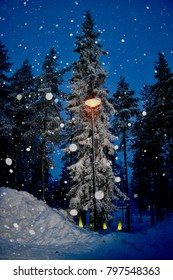 Magical Christmas day - snowing, street lamp, pine tree forest, winter wonderlands of Lapland (Arctic Circle)
