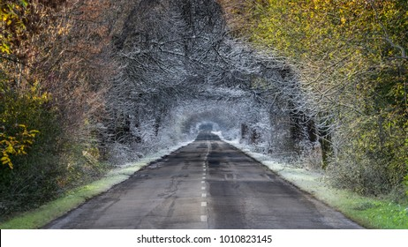 Magical country road leading from autumn into winter forest, a blend of two images taken in different seasons
