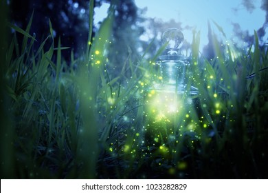 Magical fairy dust potion in bottle in the forest