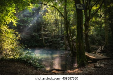 Magical forest, clear blue lake, wooden bridge, rays of light