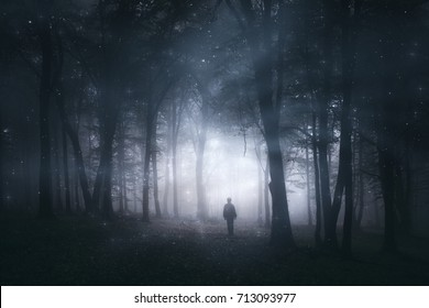 magical forest, mystery landscape with man silhouette in dark woods