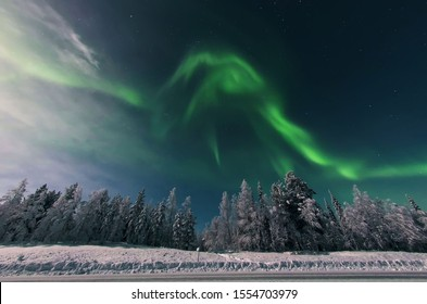 The magical Northern Lights dancing over the Finnish forest in Lapland Levi