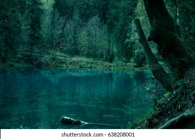 Magical pond in mysterious forest.