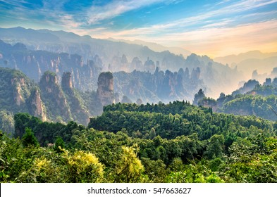 Magical scene at Zhangjiajie Forest Park. Mountain cliffs and pillars immersed in fog at sunrise. Hunan province, China.