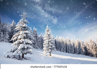 Magical snow covered tree in the winter landscape. Vibrant night sky with stars and nebula and galaxy. Deep sky astrophoto.