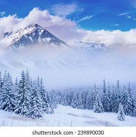 magical winter landscape