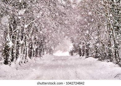 Magical winter road covered in snow in Bannow County Wexford Ireland in March 2018.