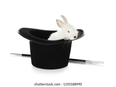 Magician hat with cute rabbit on white background