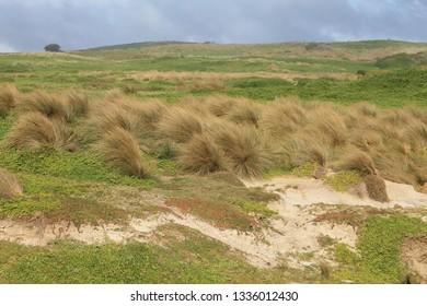 Magiclands, Phillip Island, Cape Woolamai, Bass Coast, Gippsland, Victoria, Australia.