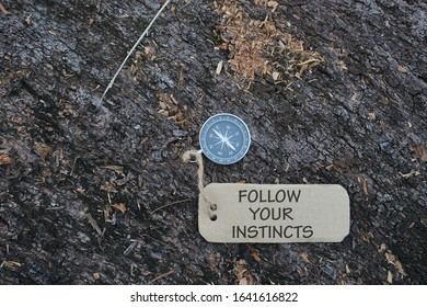Magnetic compass and paper tag with words Follow Your Instincts at outdoor. Conceptual image with selective focus