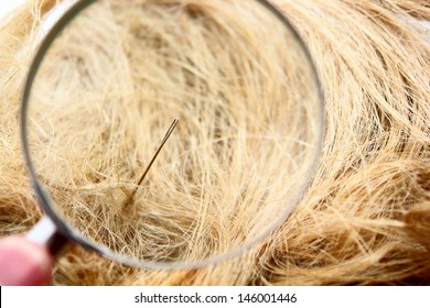 Magnification glass, needle and haystack composition
