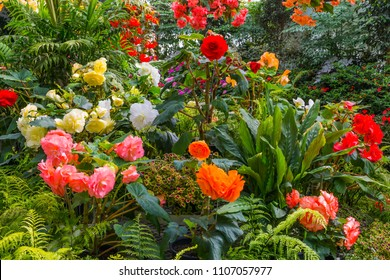 Magnificent blooming flower beds of peonies, roses and dahlias. Picturesque city park in English style in Christchurch. New Zealand. Concept of active and ecological tourism