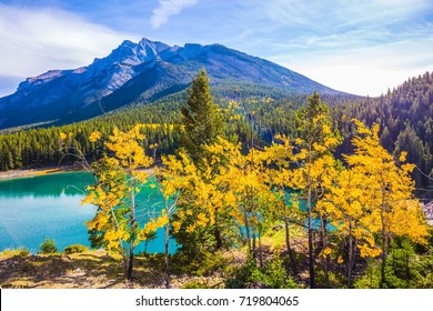 The Magnificent Lake Two Jack. Golden Autumn in Canada. The concept of ecological and active tourism. The Gulf of Minnerwanka