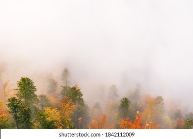 Magnificent landscapes of autumn mountains covered with fog, reaching the distant snow-capped peaks of the High Tatras