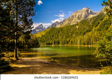 The magnificent mountain and forest scenery seen from Leigh Lake in Grand Teton NP, Wyoming, is spectacular. Forests and mountains surround this lake at every turn.