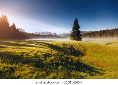 Magnificent night in the Durmitor National park. Location place village Zabljak, Montenegro, Balkans, Europe. Scenic image of the alpine valley. Magic astrophotography. Discover the beauty of earth.