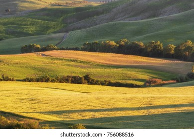 Magnificent spring rural landscape. Stunning view of green wave hills, amazing sunlight, beautiful golden fields and meadows.Italy, Europe