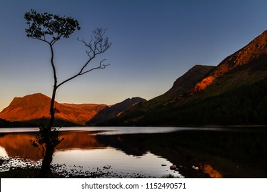 Magnificent sunset on glowing moutains with a mirror lake and a silhouetted birch tree in Buttermere Cumbria, England, UK.