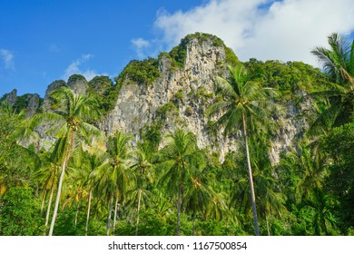 A magnificent view of the sheer limestone cliff near Ao Nang city in Krabi, Thailand.