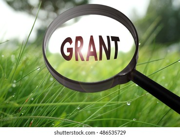 Magnifying glass with the word grant on grass background. Selective focus
