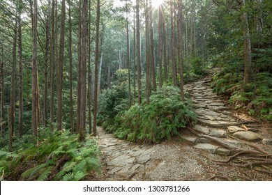 Magose-toge Pass in Kumano Ancient Road, Mie prefecture, Japan
