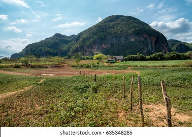 Magotes and a house in Vinales, Cuba