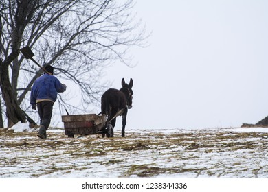 Magura, Brasov / Romania - December 5th 2014: In mountain rural areas of Romania, isolated villages are common, populated by elders who depend on own resources to support their livelihood.