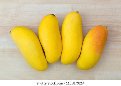 Maha chanok Rainbow mango in yellow orange, hybrid fruit between Sunset mango and Thai local mango